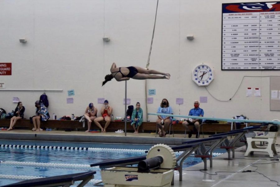 Junior+Jenna+Steffl+performs+a+back+somersault+with+one+and+a+half+twists+at+a+diving+meet.+Steffl+finished+the+regular+season+with+a+record+of+8-0+and+has+already+set+high+goals+for+her+senior+season.+%22I+hope+to+get+better%2C+bigger+dives+in+general%2C+with+more+difficulty%2C+and+also+perfecting+my+form+more%2C+in+the+air+and+on+my+entries%2C%22+she+said.+%0A